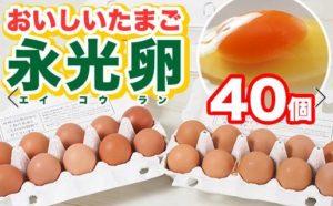 おいしいたまご 永光卵40個
