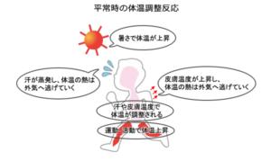 暑さ対策部屋の中で熱中症はどういうふうにして起きるのか?
