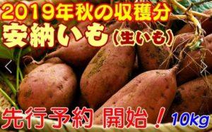中国ファームの熟成安納芋 Mサイズ
